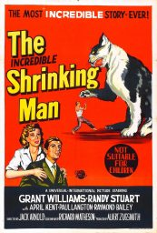 el increible hombre menguante the incredible shrinking man poster
