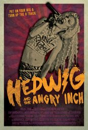 hedwig angry inch poster